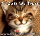De Kattenmand (Stichting) logo 1
