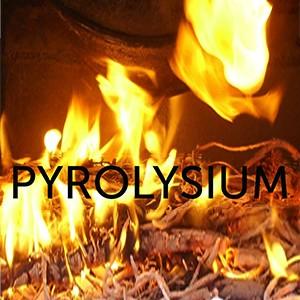 Pyrolysium (Stichting) logo 1