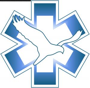 Dierennoodhulp Flevoland (Stichting) logo 1