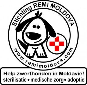 Remi Moldova (Stichting) logo 1