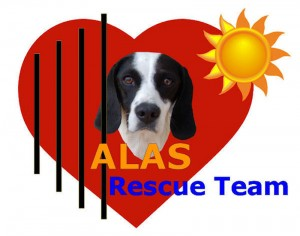 ALAS Rescue Team logo 1