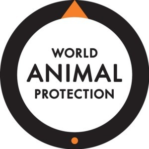 World Animal Protection logo 1