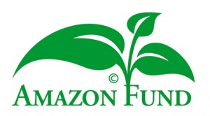 Amazon Fund logo 1