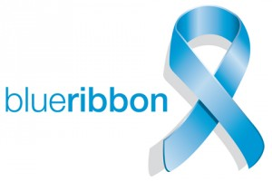 Stichting Blue Ribbon logo 2