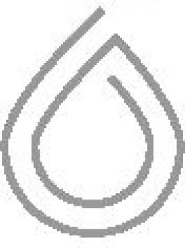 Stichting Raak een Snaar logo 1