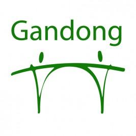Stichting Gandong logo 2