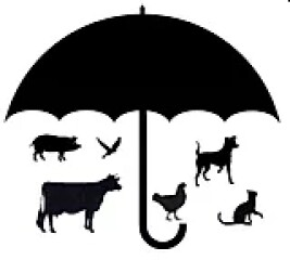 Logo Stichting Assisting Animals International
