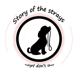 Logo Stichting story of the strays