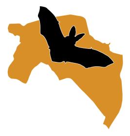 Logo Stichting Vleermuiswerkgroep Groningen