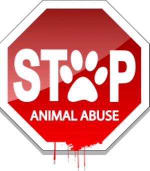 Logo Stem voor dieren!