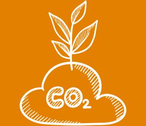 Logo CO2 compensatie
