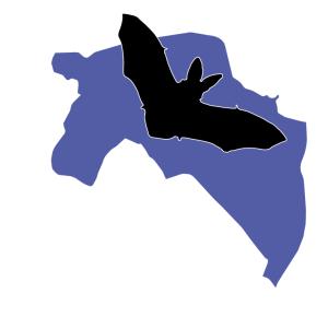 Logo Vleermuizenopvang Groningen ondersteunen!