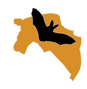 Logo Vleermuiswerkgroep Algemeen