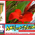 Nijmeegse vierdaagse Amy and Friends logo 1
